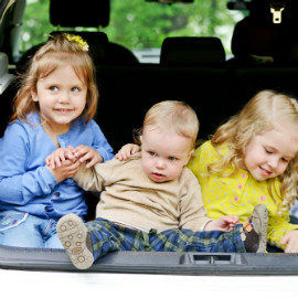 A Family Friendly Guide to Packing Food for a Road Trip